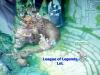 League--01